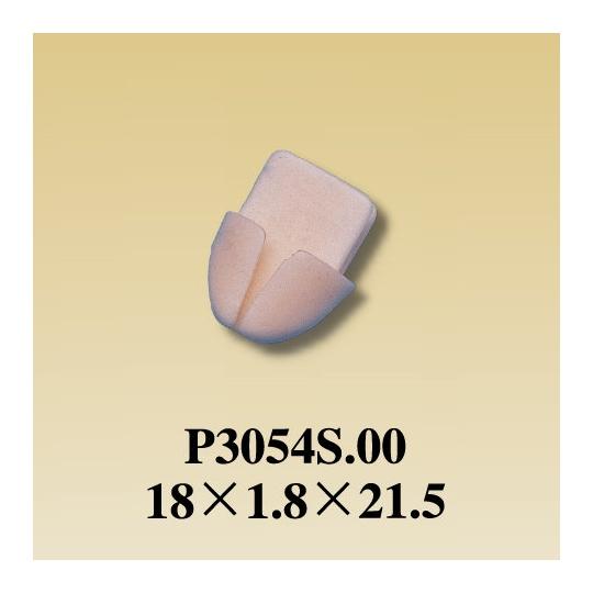 P3054S.00
