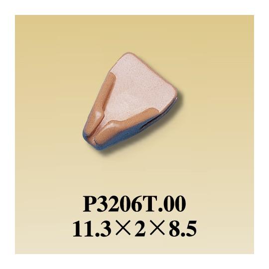 P3206T.00