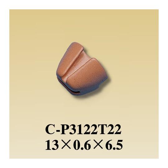 C-P3122T22